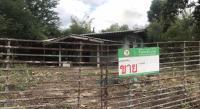 บ้านพักอาศัยหลุดจำนอง ธ.ธนาคารกสิกรไทย หัวนา เดิมบางนางบวช สุพรรณบุรี